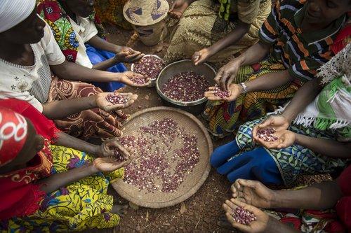 Burundi_4880