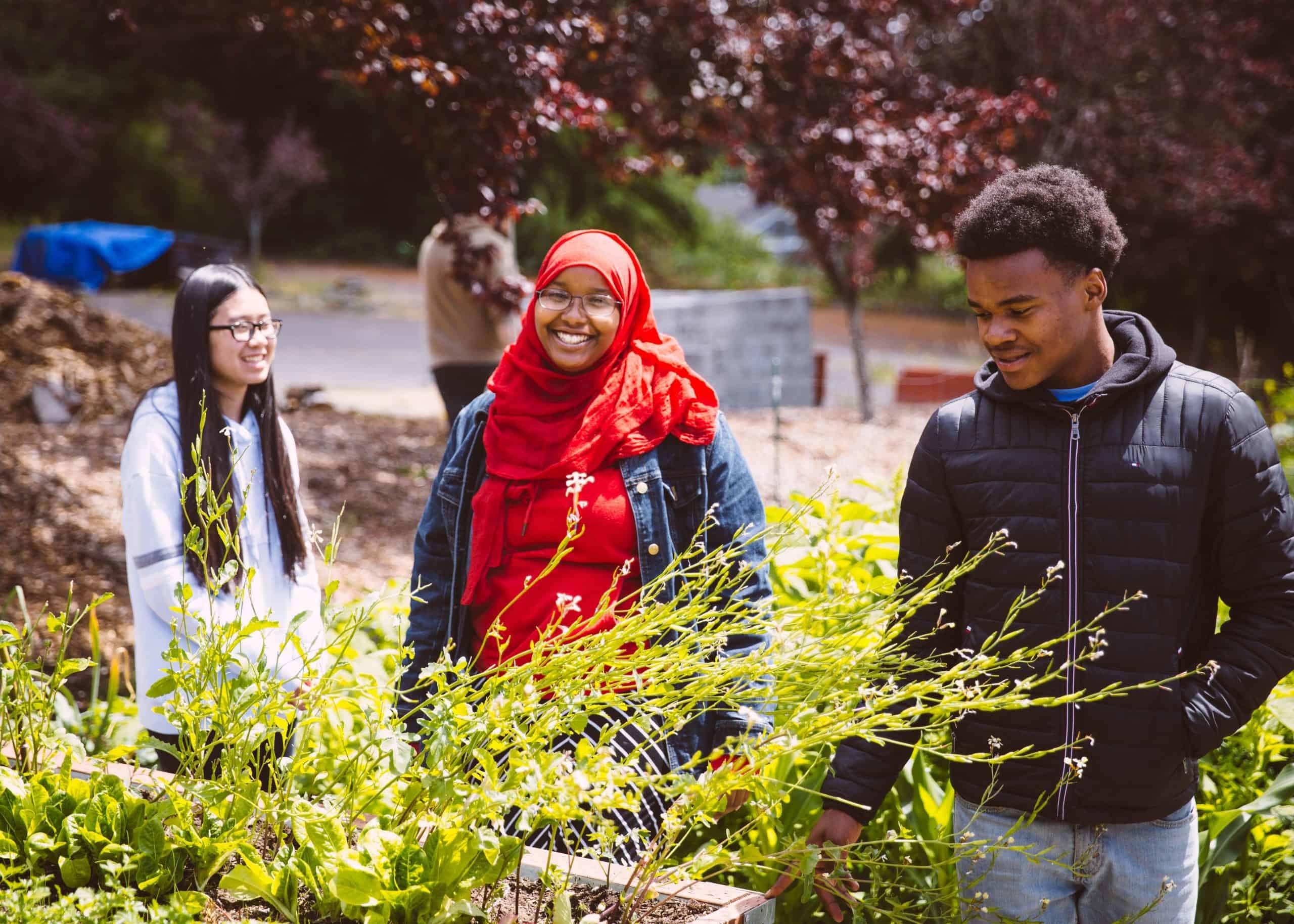 SEATTLE_garden interns